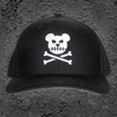 BEAR BONES CAP
